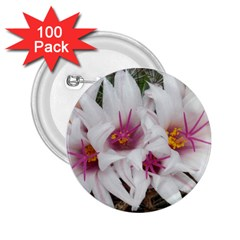 Bloom Cactus  2 25  Button (100 Pack) by ADIStyle