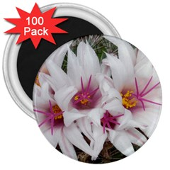 Bloom Cactus  3  Button Magnet (100 Pack) by ADIStyle