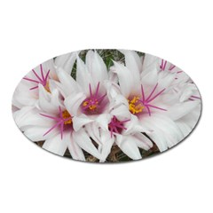 Bloom Cactus  Magnet (oval) by ADIStyle