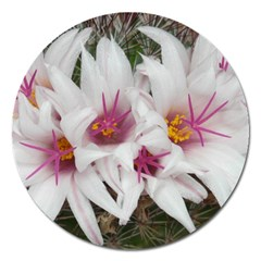 Bloom Cactus  Magnet 5  (round) by ADIStyle