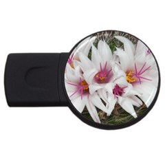 Bloom Cactus  2gb Usb Flash Drive (round) by ADIStyle
