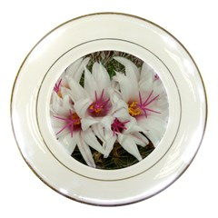 Bloom Cactus  Porcelain Display Plate by ADIStyle