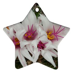 Bloom Cactus  Star Ornament (two Sides) by ADIStyle