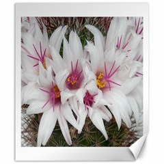 Bloom Cactus  Canvas 20  X 24  (unframed) by ADIStyle
