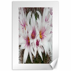 Bloom Cactus  Canvas 20  X 30  (unframed) by ADIStyle