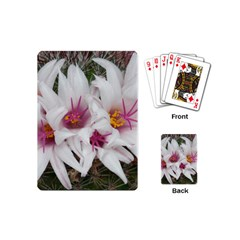 Bloom Cactus  Playing Cards (mini) by ADIStyle