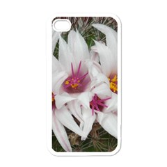 Bloom Cactus  Apple Iphone 4 Case (white) by ADIStyle