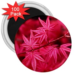 Red Autumn 3  Button Magnet (100 Pack) by ADIStyle