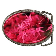 Red Autumn Belt Buckle (oval) by ADIStyle