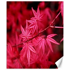 Red Autumn Canvas 8  X 10  (unframed) by ADIStyle