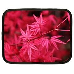 Red Autumn Netbook Case (xxl)