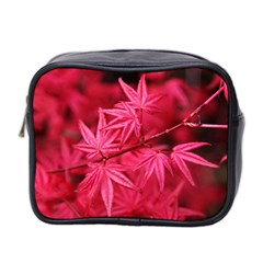 Red Autumn Mini Travel Toiletry Bag (Two Sides) by ADIStyle