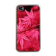 Red Autumn Apple Iphone 4 Case (clear) by ADIStyle