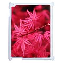 Red Autumn Apple Ipad 2 Case (white) by ADIStyle