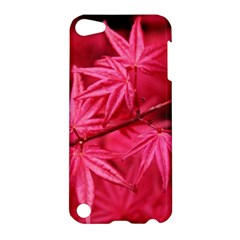 Red Autumn Apple Ipod Touch 5 Hardshell Case by ADIStyle