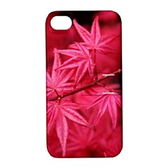 Red Autumn Apple Iphone 4/4s Hardshell Case With Stand by ADIStyle
