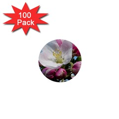 Apple Blossom  1  Mini Button (100 Pack) by ADIStyle