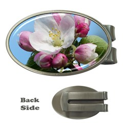 Apple Blossom  Money Clip (oval) by ADIStyle