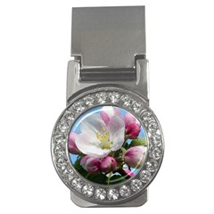 Apple Blossom  Money Clip (cz) by ADIStyle