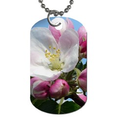 Apple Blossom  Dog Tag (two Sided)  by ADIStyle