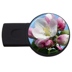 Apple Blossom  2gb Usb Flash Drive (round) by ADIStyle