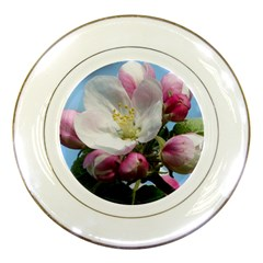 Apple Blossom  Porcelain Display Plate by ADIStyle