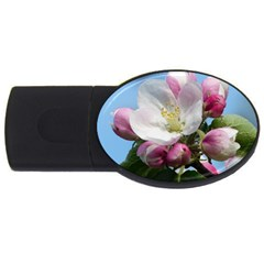 Apple Blossom  4gb Usb Flash Drive (oval) by ADIStyle