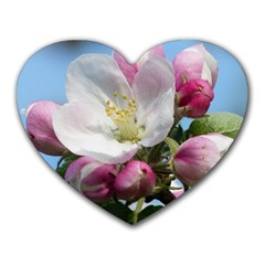 Apple Blossom  Mouse Pad (heart)