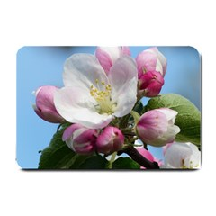 Apple Blossom  Small Door Mat by ADIStyle
