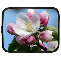 Apple Blossom  Netbook Case (large) by ADIStyle