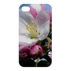 Apple Blossom  Apple Iphone 4/4s Hardshell Case by ADIStyle