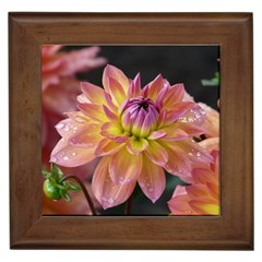 Dahlia Garden  Framed Ceramic Tile by ADIStyle