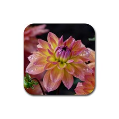 Dahlia Garden  Drink Coaster (square) by ADIStyle