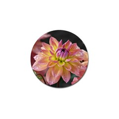 Dahlia Garden  Golf Ball Marker 4 Pack by ADIStyle