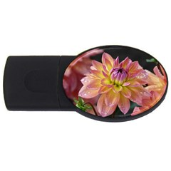 Dahlia Garden  4gb Usb Flash Drive (oval) by ADIStyle