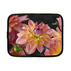 Dahlia Garden  Netbook Case (Small) by ADIStyle