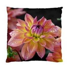 Dahlia Garden  Cushion Case (two Sides) by ADIStyle