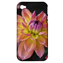 Dahlia Garden  Apple Iphone 4/4s Hardshell Case (pc+silicone) by ADIStyle