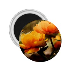 Flowers Butterfly 2 25  Button Magnet by ADIStyle