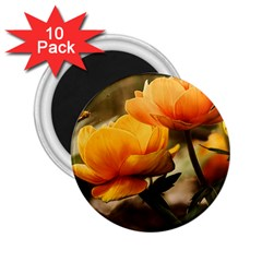 Flowers Butterfly 2 25  Button Magnet (10 Pack) by ADIStyle