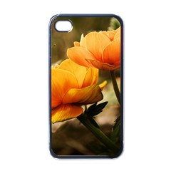 Flowers Butterfly Apple Iphone 4 Case (black) by ADIStyle