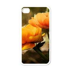 Flowers Butterfly Apple Iphone 4 Case (white) by ADIStyle