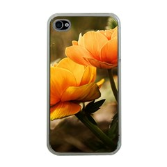 Flowers Butterfly Apple Iphone 4 Case (clear) by ADIStyle