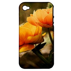 Flowers Butterfly Apple Iphone 4/4s Hardshell Case (pc+silicone)