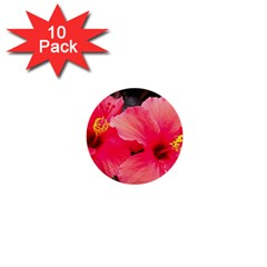 Red Hibiscus 1  Mini Button (10 Pack) by ADIStyle