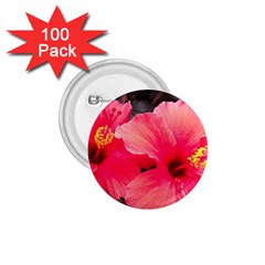 Red Hibiscus 1 75  Button (100 Pack) by ADIStyle