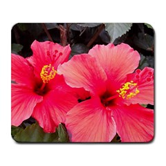 Red Hibiscus Large Mouse Pad (rectangle) by ADIStyle