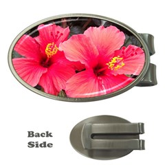 Red Hibiscus Money Clip (oval) by ADIStyle