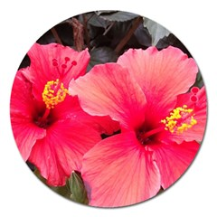 Red Hibiscus Magnet 5  (round) by ADIStyle