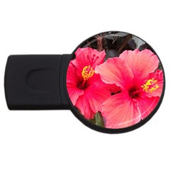 Red Hibiscus 2gb Usb Flash Drive (round) by ADIStyle